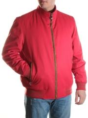 FD06010 Куртка мужская демисезонная (100 гр. синтепон)